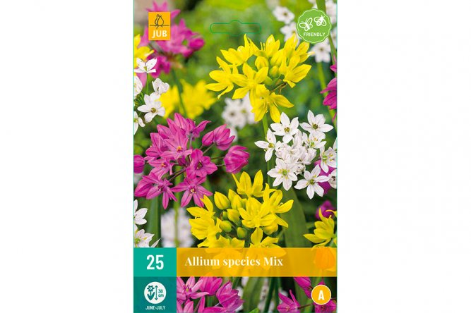 Alliums Species Mix